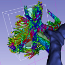 DMRI 3D SLICER-icon.png