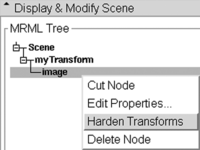 "right click on the image and select ""Harden Transform"" from the popup menu to reorient an image"