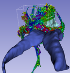 2011-11-12-CroppingWholeBrainTractography-detail.png