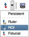 Initialize ROI placement