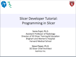 SlicerProgrammingTutorial.png